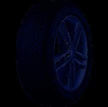 Bridgestone 205/60 R17 93H Blizzak LM-005 M+S  C A 71 W2056017